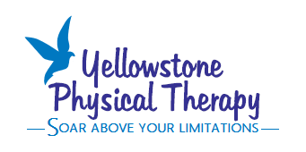 yellowstonephysicaltherapy.com