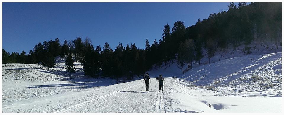 xcountry skiing